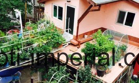 Самостоятелна къща за две семейства, разположена в кв. Дружба, град Хасково